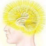 banner-brain